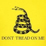 Don-t-Tread-On-Me-Gadsden-Flag