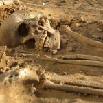 skeletal remains2